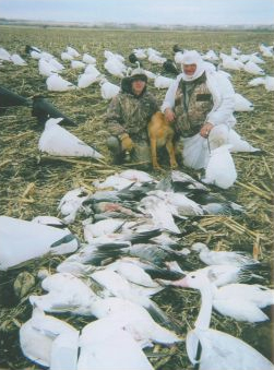 snow goose hunting guide service